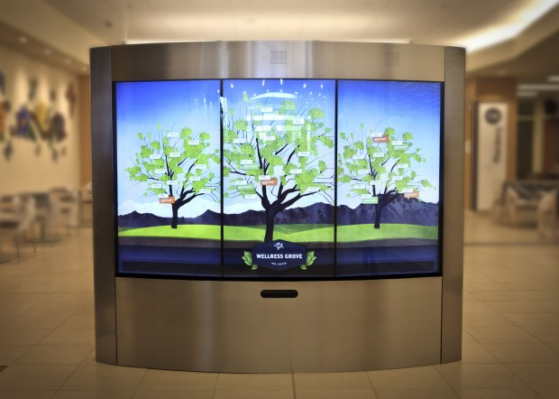 KAISER PERMANENTE: Interactive Touchscreen Kiosk